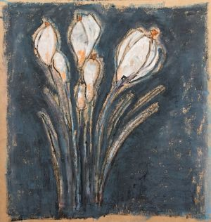 Graphics, Still life - White crocuses