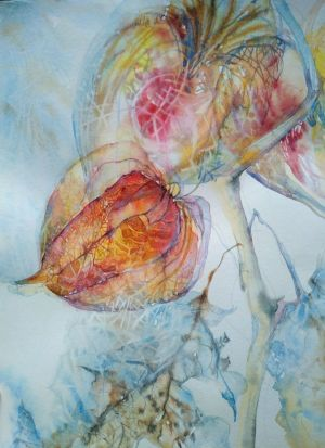 Painting, Acrylic - Physalis