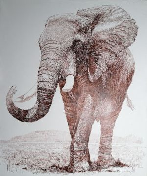 Graphics, Realism - Elephant